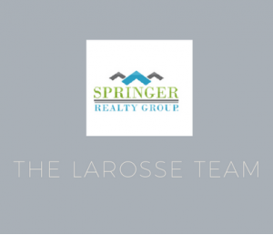 Springer Realty Group